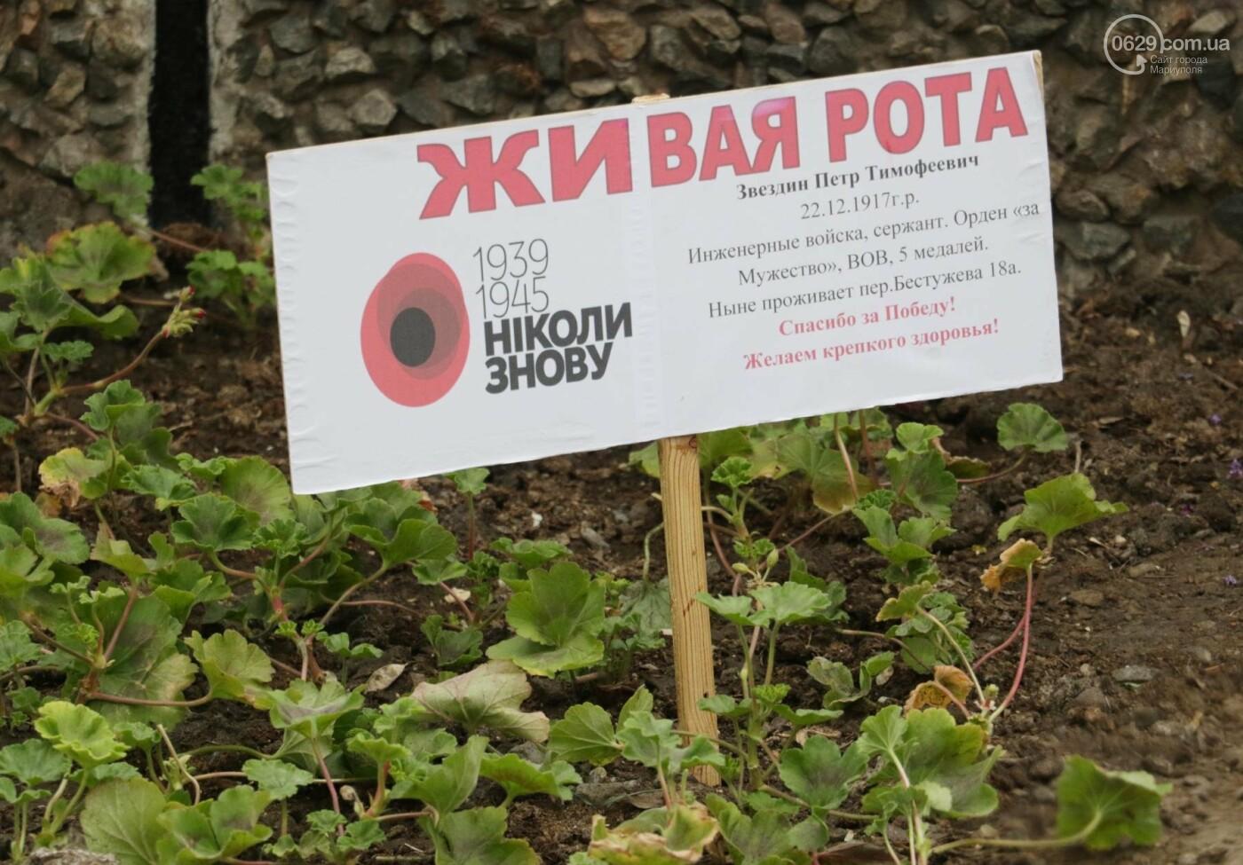 C красным знаменем и песнями. В Мариуполе почтили память погибших во Второй мировой войне (ФОТОРЕПОРТАЖ), фото-11