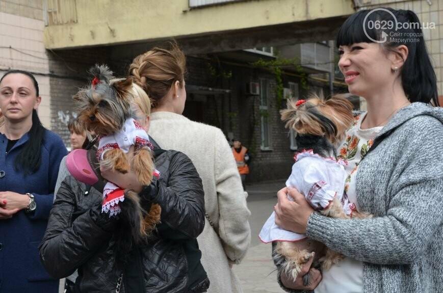 Парад вышиванок, террорист Чечен в Мариуполе и переименование улицы Георгиевской.  О чем писал 0629.com.ua 18 мая, фото-7