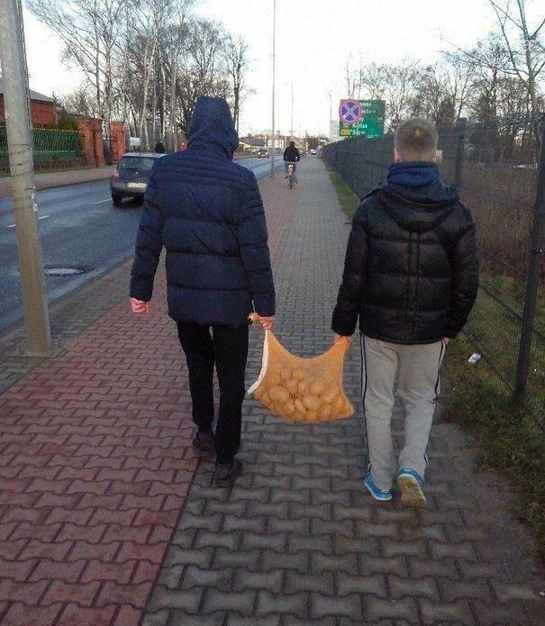Как мариупольцы зарабатывают в Польше, фото-2