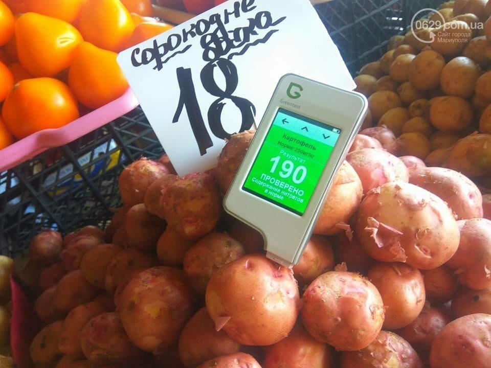 Стало известно, сколько нитратов содержится в молодых овощах в Мариуполе, - ФОТО, фото-4
