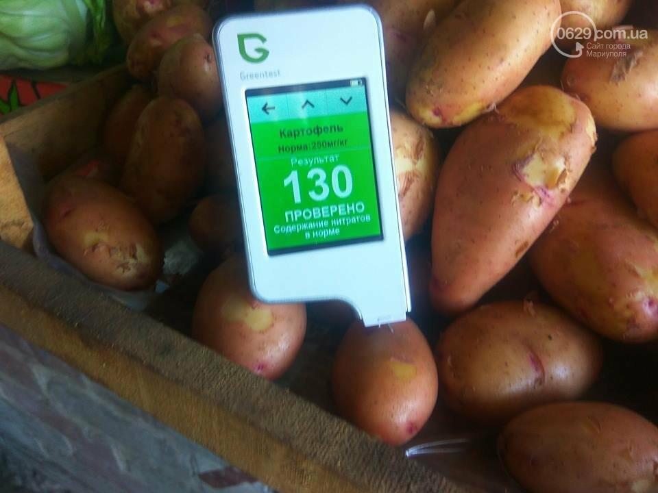 Стало известно, сколько нитратов содержится в молодых овощах в Мариуполе, - ФОТО, фото-2