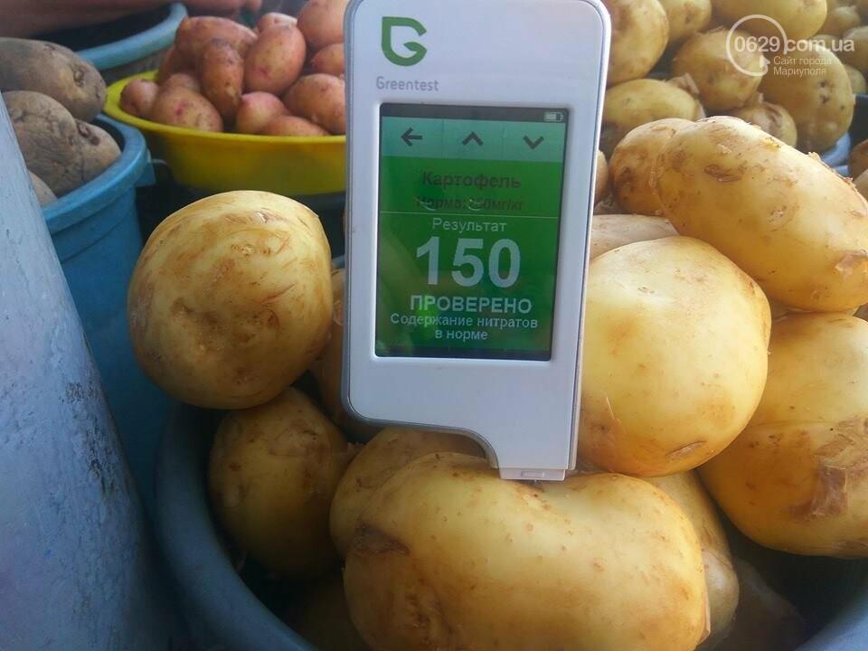 Стало известно, сколько нитратов содержится в молодых овощах в Мариуполе, - ФОТО, фото-5