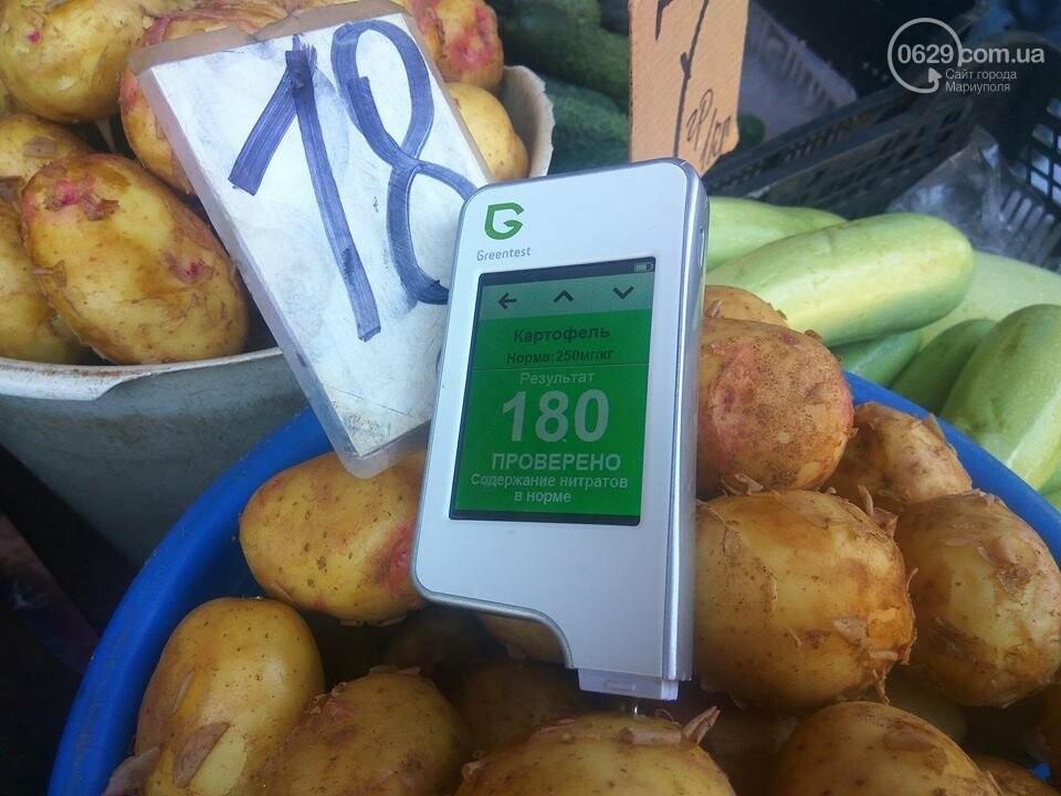 Стало известно, сколько нитратов содержится в молодых овощах в Мариуполе, - ФОТО, фото-6