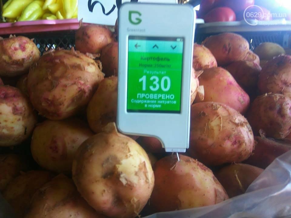 Стало известно, сколько нитратов содержится в молодых овощах в Мариуполе, - ФОТО, фото-3