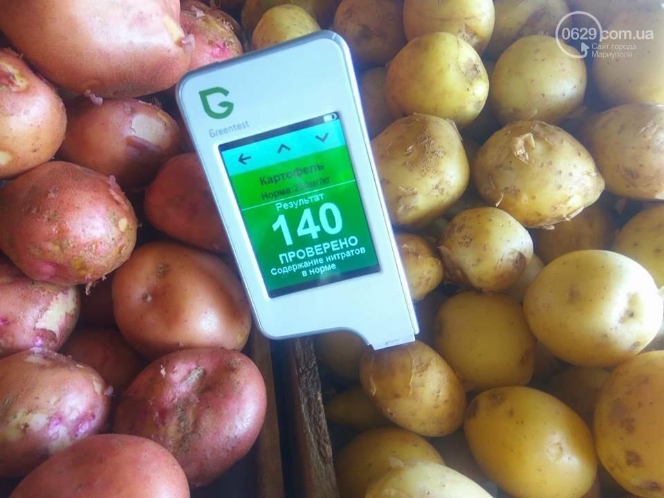 Стало известно, сколько нитратов содержится в молодых овощах в Мариуполе, - ФОТО, фото-7