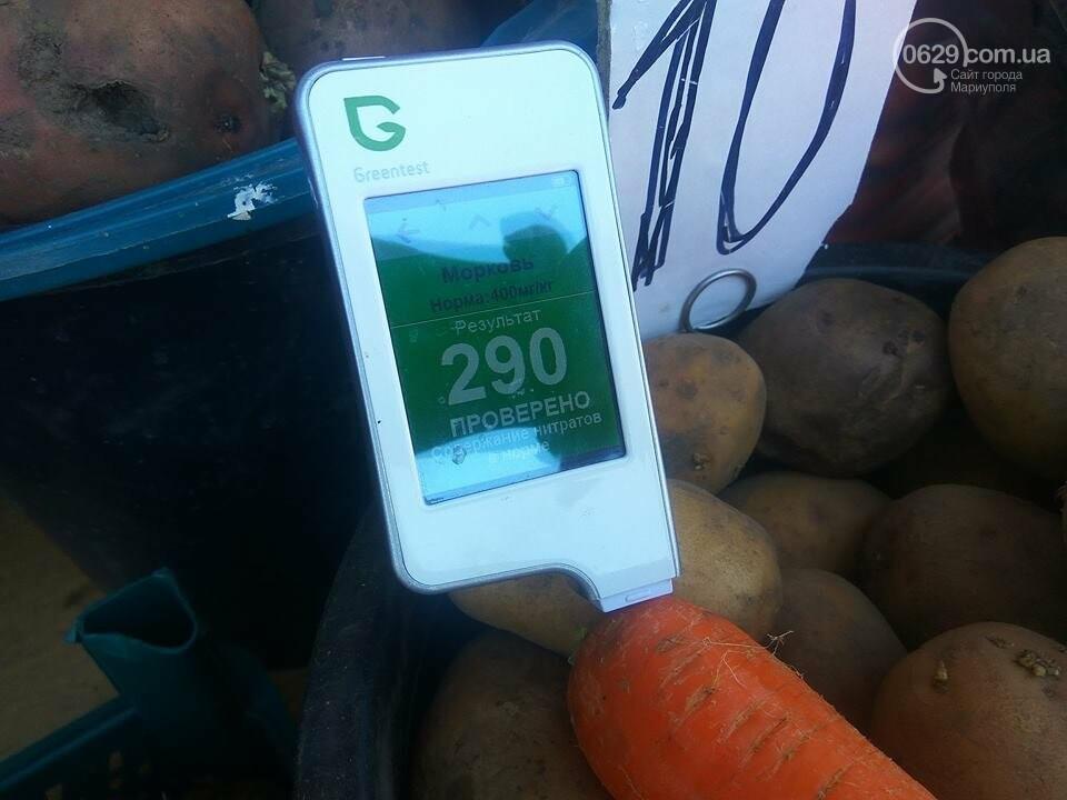 Стало известно, сколько нитратов содержится в молодых овощах в Мариуполе, - ФОТО, фото-17