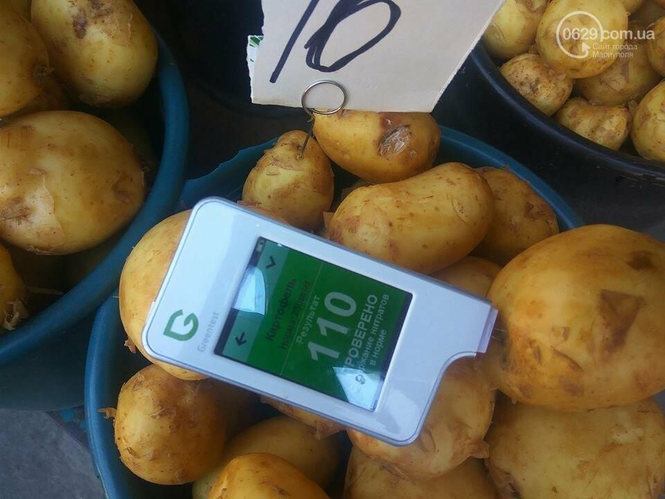 Стало известно, сколько нитратов содержится в молодых овощах в Мариуполе, - ФОТО, фото-9