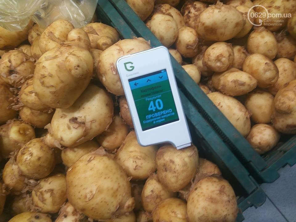 Стало известно, сколько нитратов содержится в молодых овощах в Мариуполе, - ФОТО, фото-8