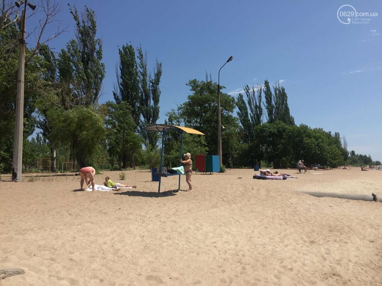 Реконструировать левобережную зону отдыха в  Мариуполе отдали известному поставщику саженцев, - ФОТО , фото-4