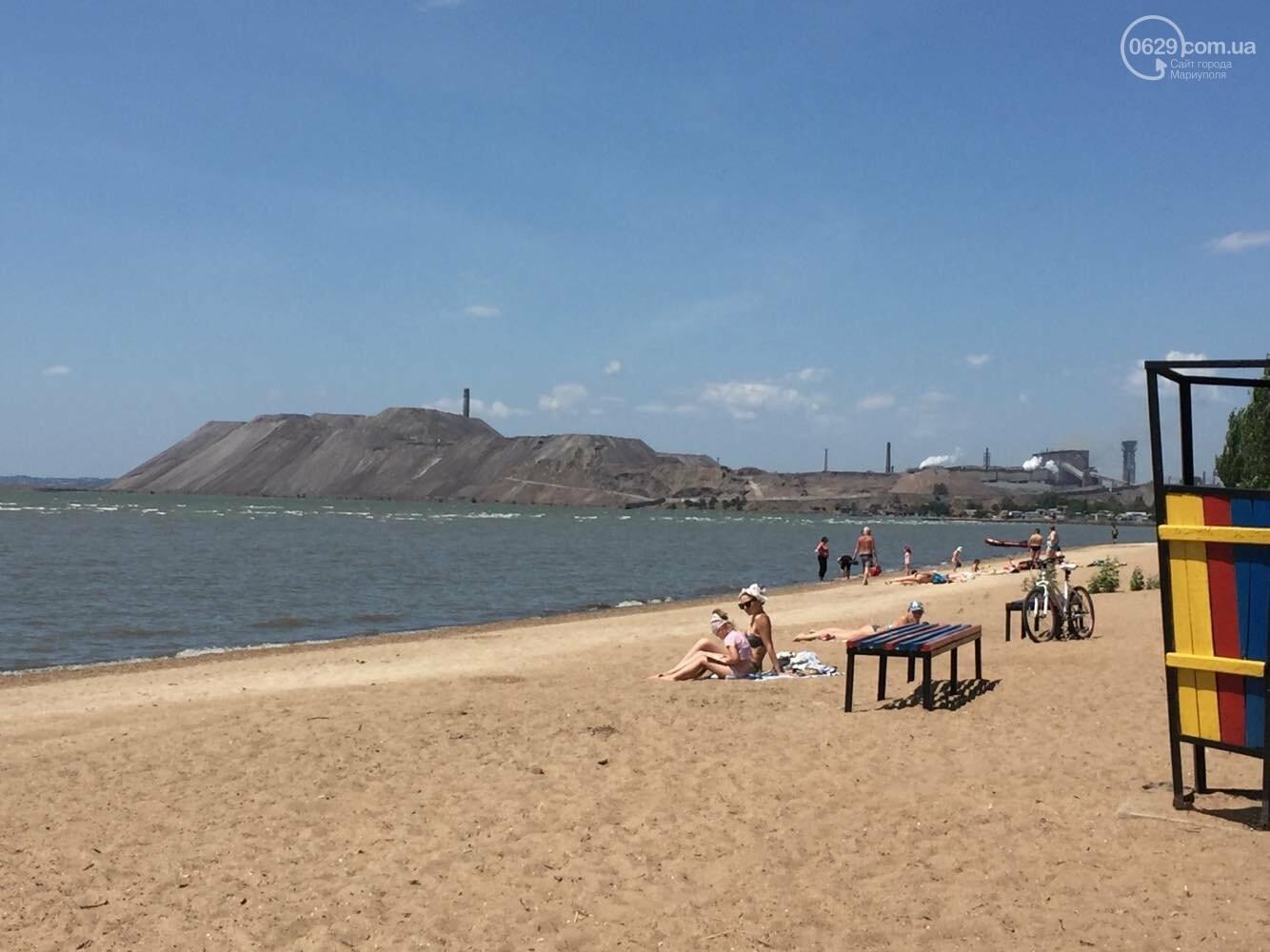 Реконструировать левобережную зону отдыха в  Мариуполе отдали известному поставщику саженцев, - ФОТО , фото-2