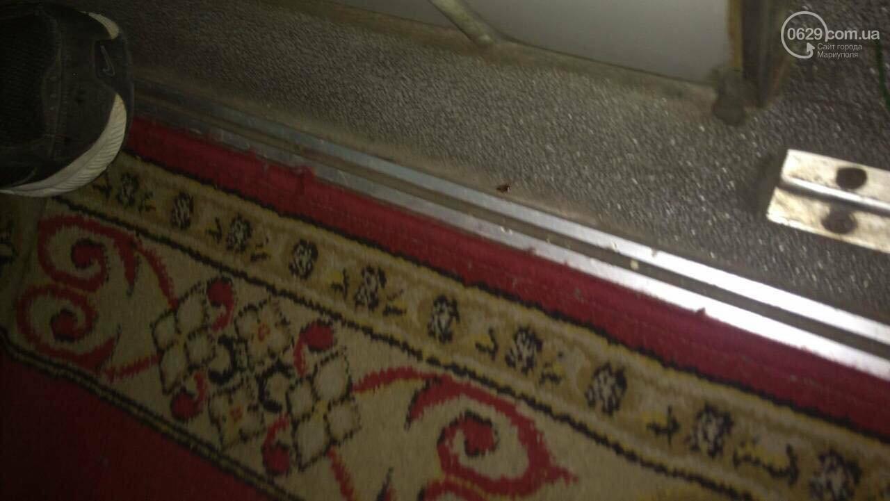 Мариупольцы ехали в киевском поезде с тараканами,- ФОТО, ВИДЕО, фото-5