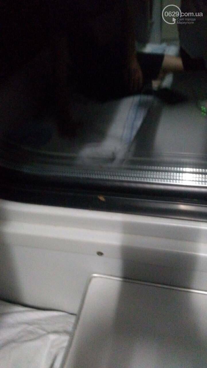 Мариупольцы ехали в киевском поезде с тараканами,- ФОТО, ВИДЕО, фото-6
