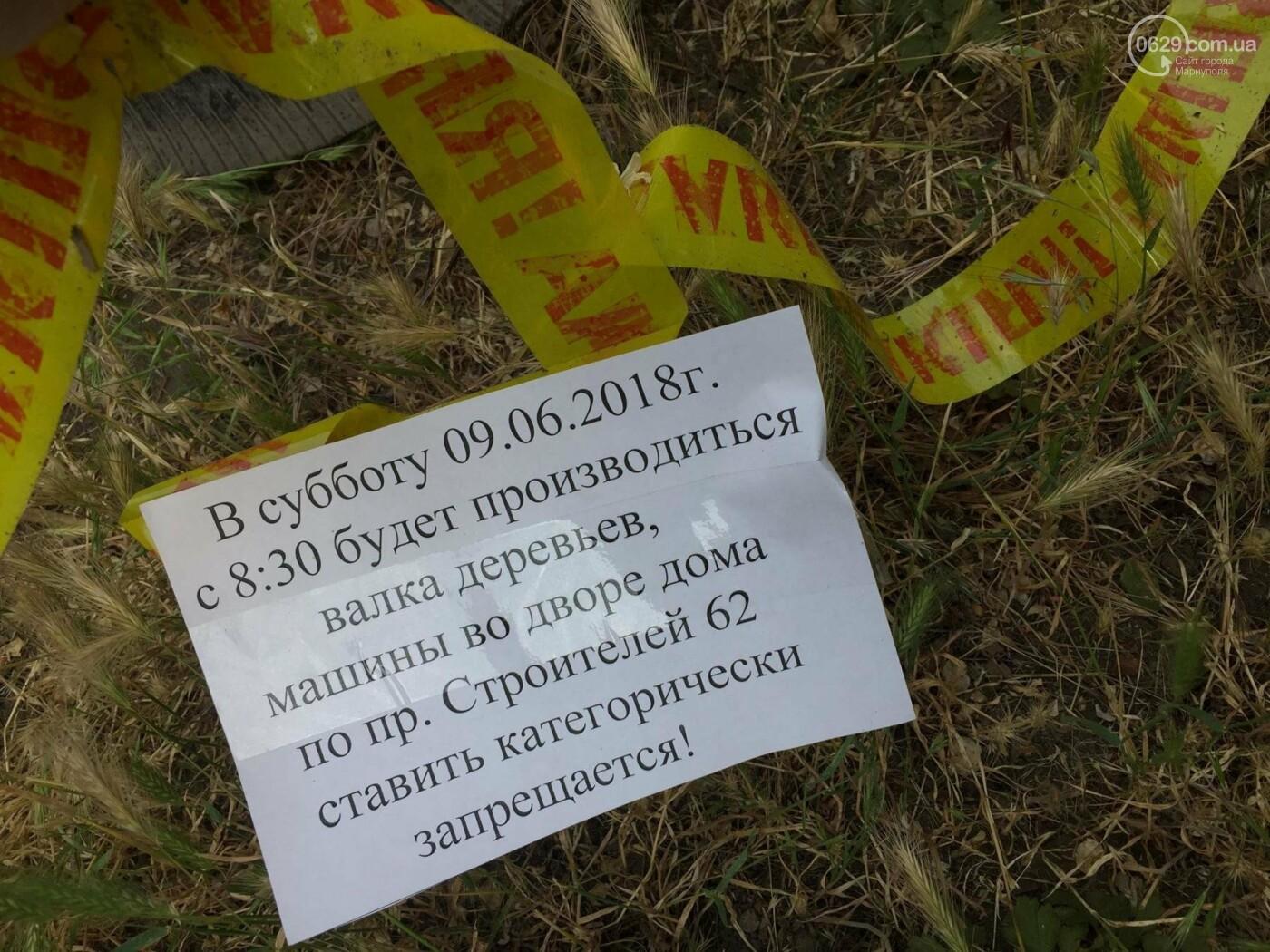 На пр. Строителей с самого утра сносили деревья, -ФОТО, ВИДЕО, фото-1
