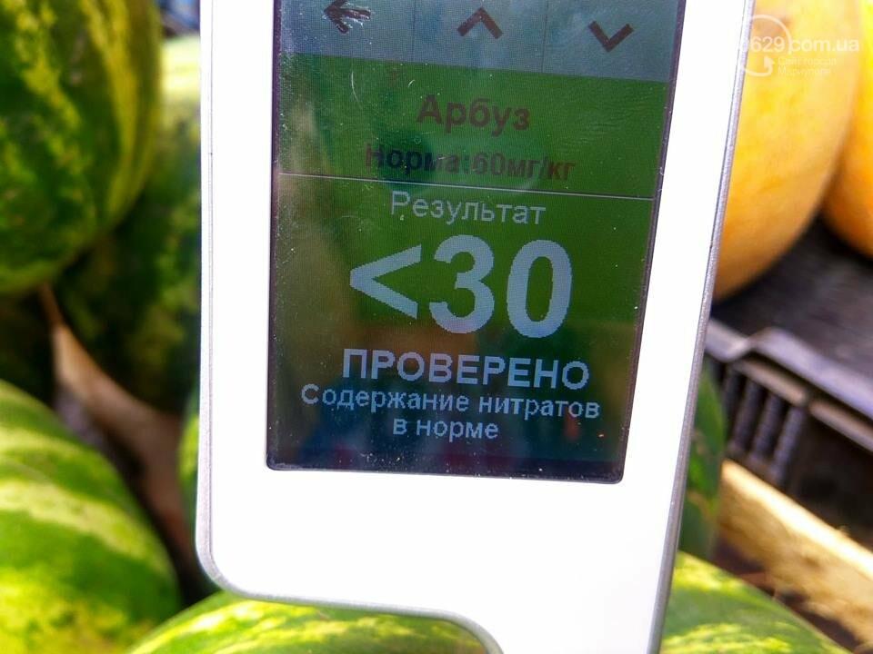Сезон арбузов в Мариуполе: стало известно, сколько в них нитратов, - ФОТО, фото-1