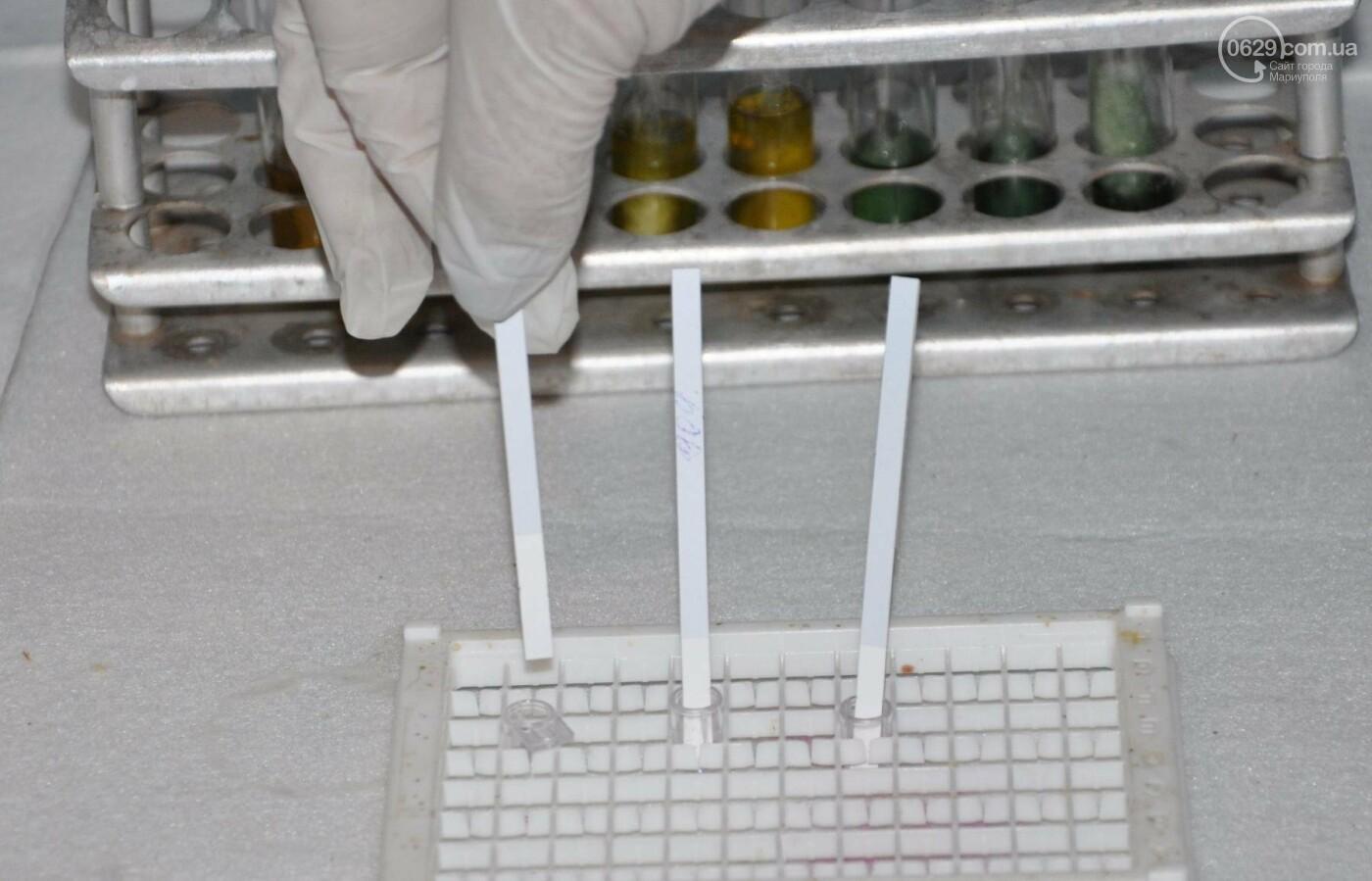 Откуда Мариупольский молокозавод получает натуральное молоко?, фото-12