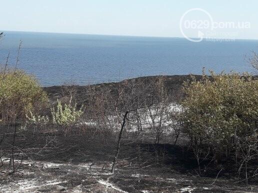 Масштабный пожар. В поселке Мелекино горит сухая трава, - ДОПОЛНЕНО, ВИДЕО, ФОТО, фото-2