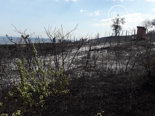 Масштабный пожар. В поселке Мелекино горит сухая трава, - ДОПОЛНЕНО, ВИДЕО, ФОТО, фото-3