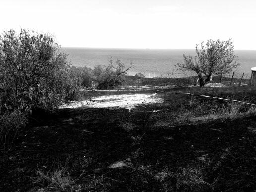 Масштабный пожар. В поселке Мелекино горит сухая трава, - ДОПОЛНЕНО, ВИДЕО, ФОТО, фото-1