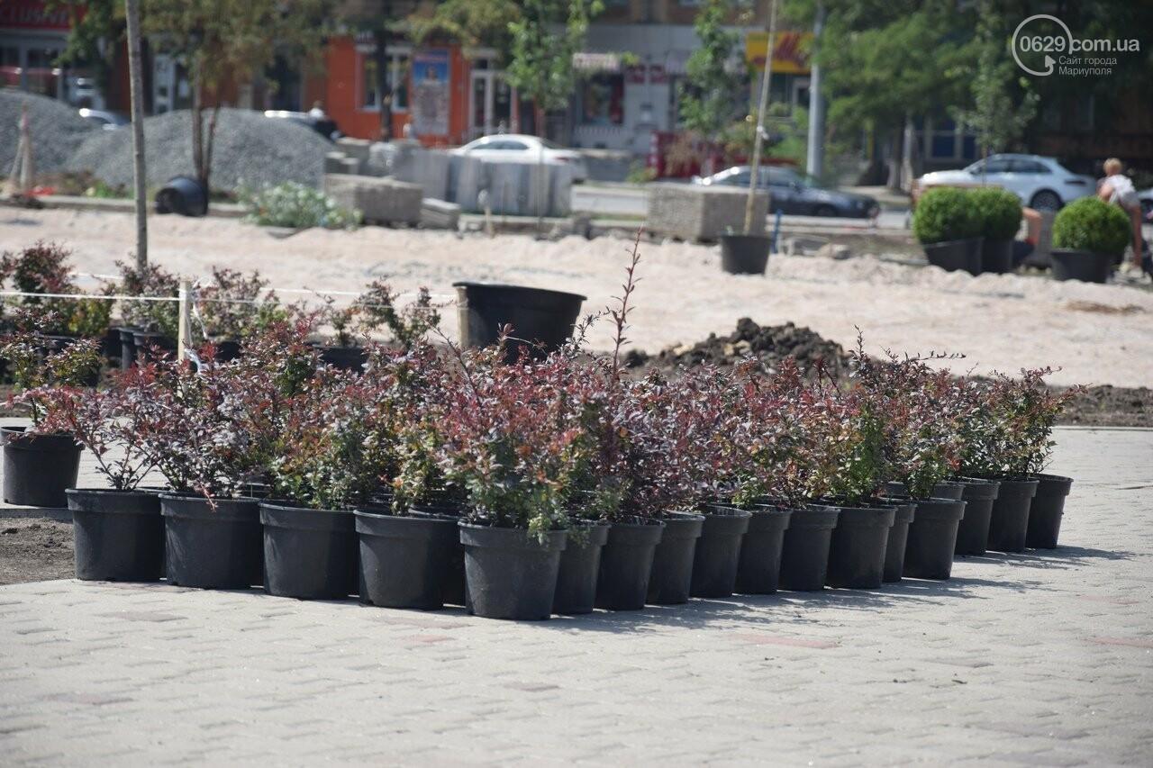 Платаны, клены, сакуры: в Мариуполе под палящим солнцем начали высаживать деревья, - ФОТО, ВИДЕО, фото-2