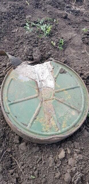 В пойме реки Кальчик обнаружили мину, - ДОПОЛНЕНО, ФОТО, фото-1