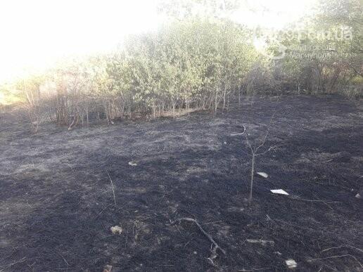В Мариуполе сгорело 3 дачных участка, - ФОТОФАКТ, фото-3