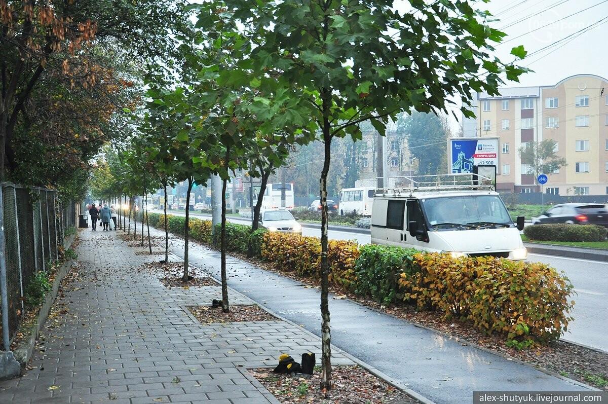Адские яблочки, или чем мог бы помочь Мариуполю опыт других городов, фото-2