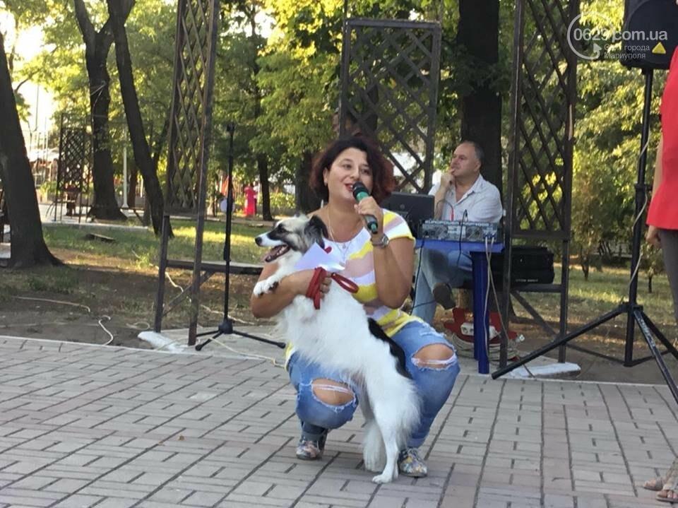"""""""Моя дворНяшка"""". В Мариуполе выбрали самую лучшую беспородную собаку, -  ФОТО, ВИДЕО, фото-1"""