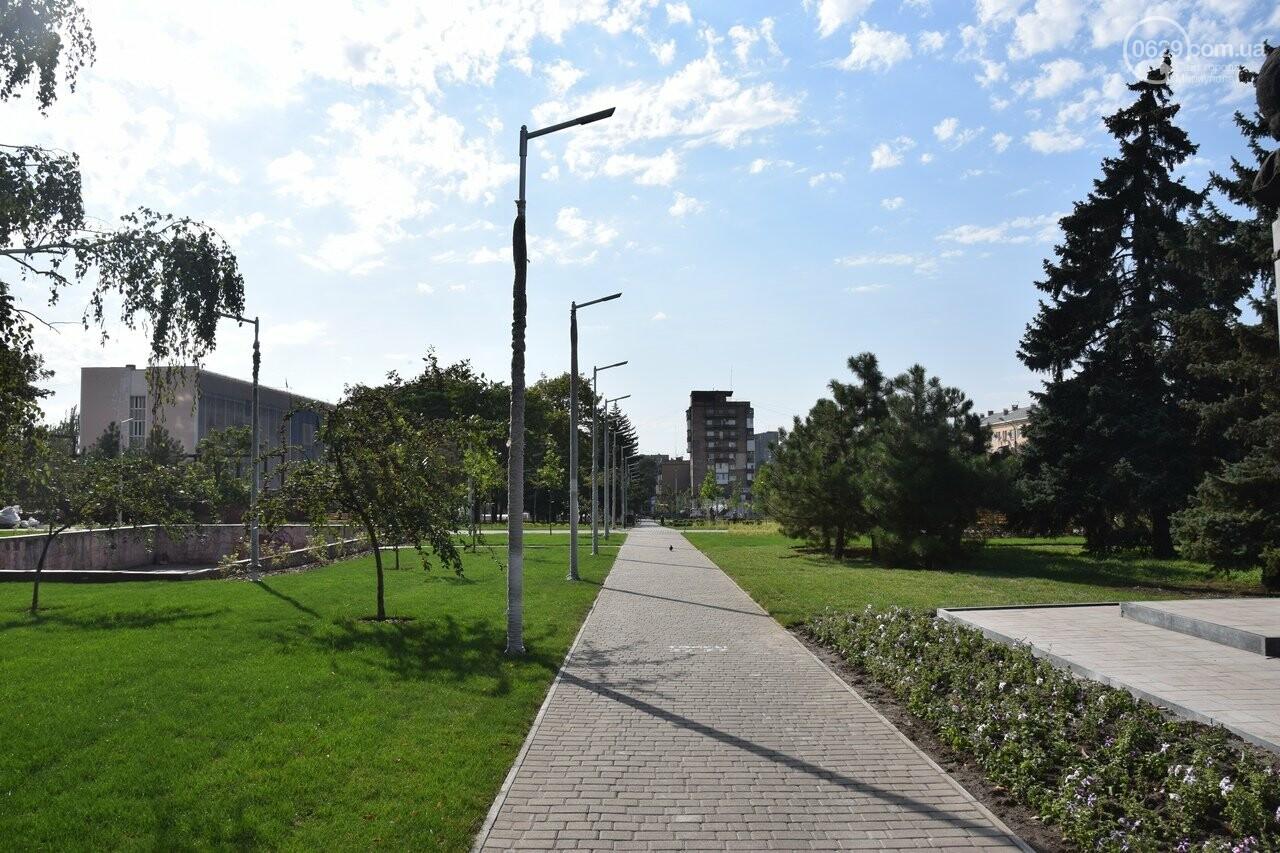 На Греческой площади в Мариуполе засыхают кустарники, но зазеленел газон, - ФОТОРЕПОРТАЖ, ВИДЕО, фото-55