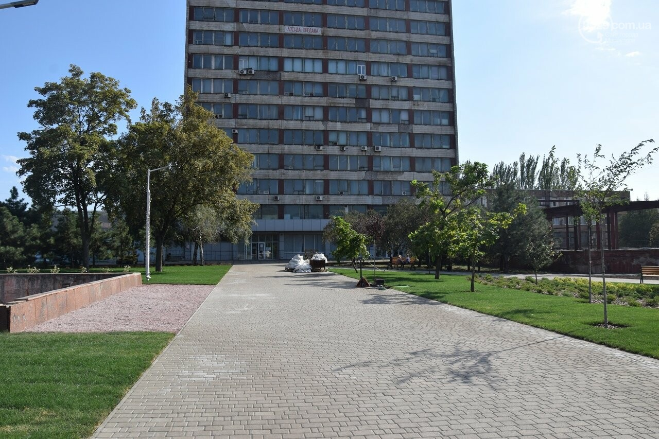 На Греческой площади в Мариуполе засыхают кустарники, но зазеленел газон, - ФОТОРЕПОРТАЖ, ВИДЕО, фото-6