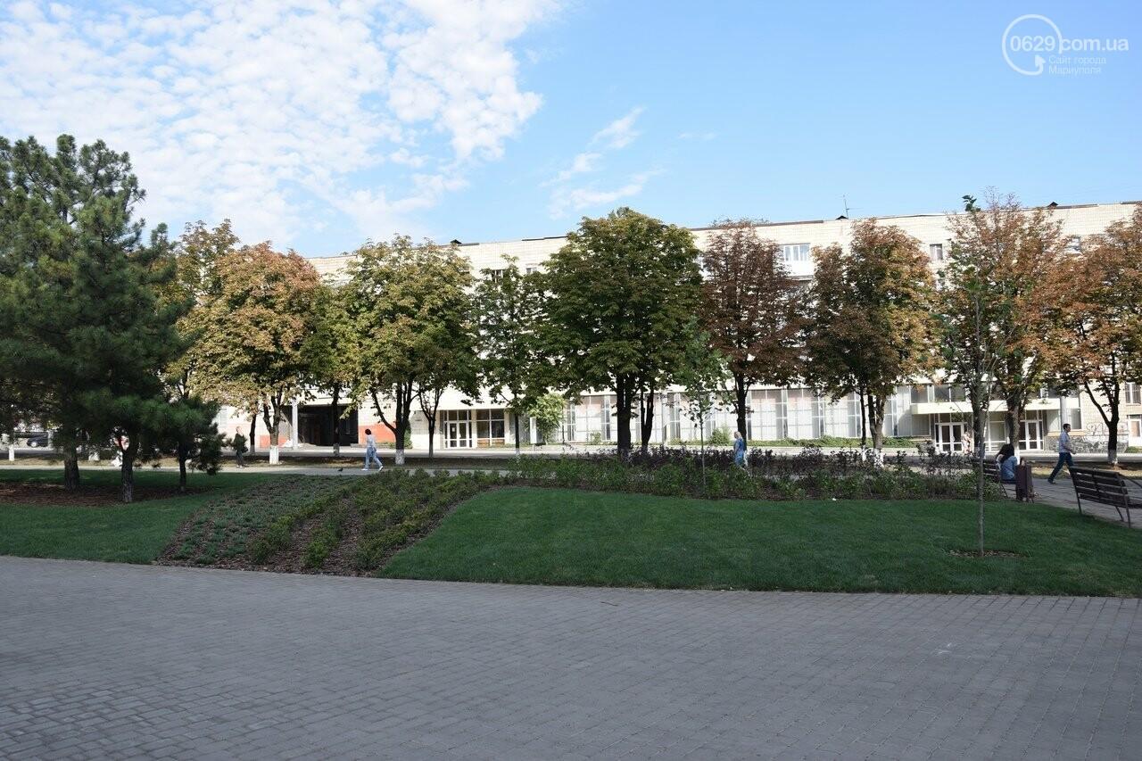 На Греческой площади в Мариуполе засыхают кустарники, но зазеленел газон, - ФОТОРЕПОРТАЖ, ВИДЕО, фото-64