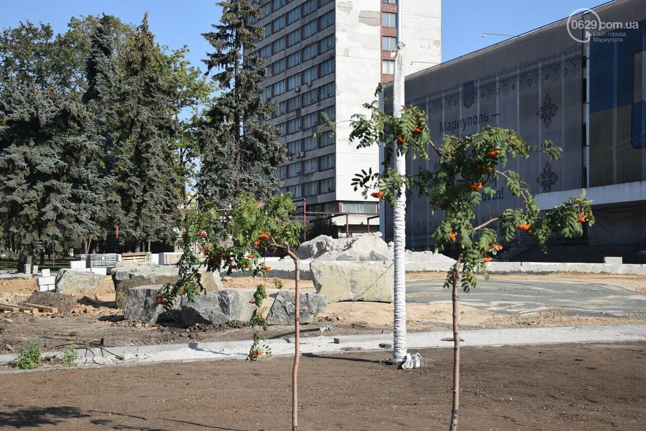На Греческой площади в Мариуполе засыхают кустарники, но зазеленел газон, - ФОТОРЕПОРТАЖ, ВИДЕО, фото-46