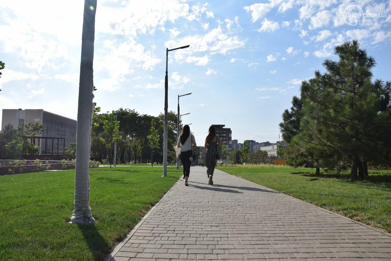На Греческой площади в Мариуполе засыхают кустарники, но зазеленел газон, - ФОТОРЕПОРТАЖ, ВИДЕО, фото-51