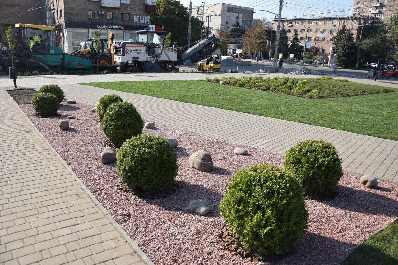 На Греческой площади в Мариуполе засыхают кустарники, но зазеленел газон, - ФОТОРЕПОРТАЖ, ВИДЕО, фото-8