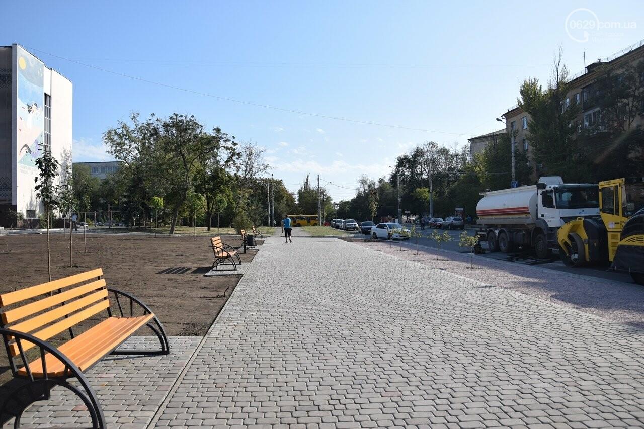На Греческой площади в Мариуполе засыхают кустарники, но зазеленел газон, - ФОТОРЕПОРТАЖ, ВИДЕО, фото-54