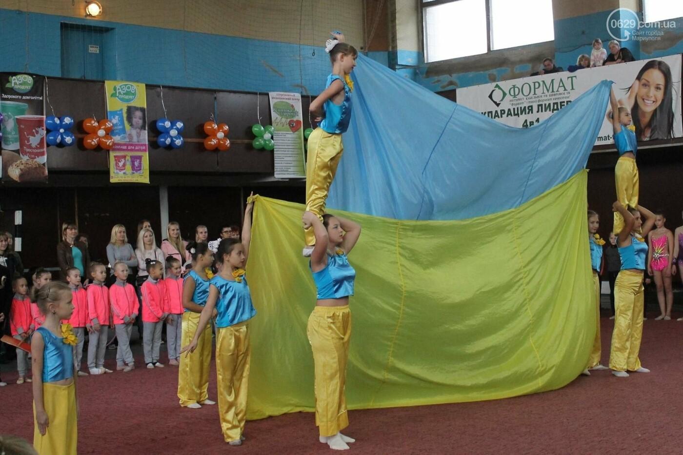 Мариупольцев приглашают на 8-й турнир по художественной гимнастике «Елизавета», фото-14