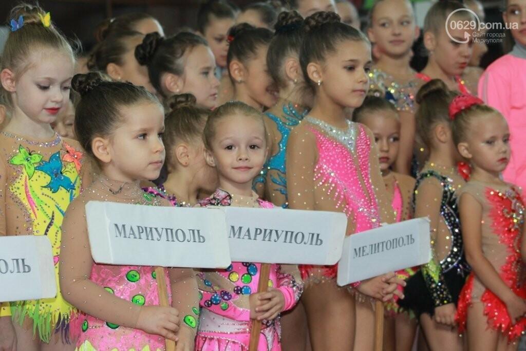 Мариупольцев приглашают на 8-й турнир по художественной гимнастике «Елизавета», фото-21