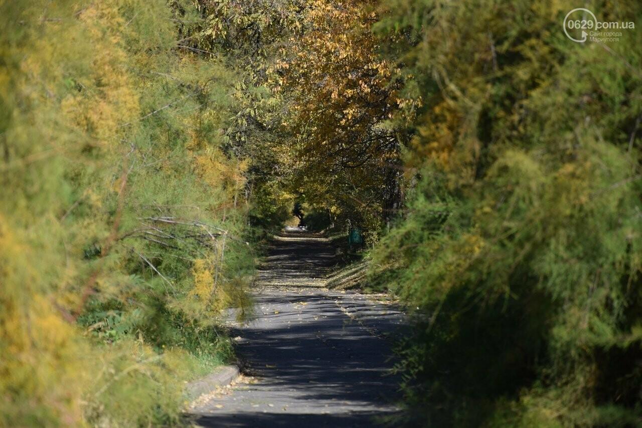 Мариуполь ловит теплое дыхание осени, - ФОТОРЕПОРТАЖ, фото-25