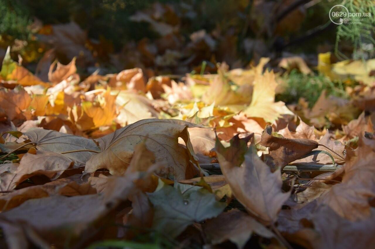 Мариуполь ловит теплое дыхание осени, - ФОТОРЕПОРТАЖ, фото-5