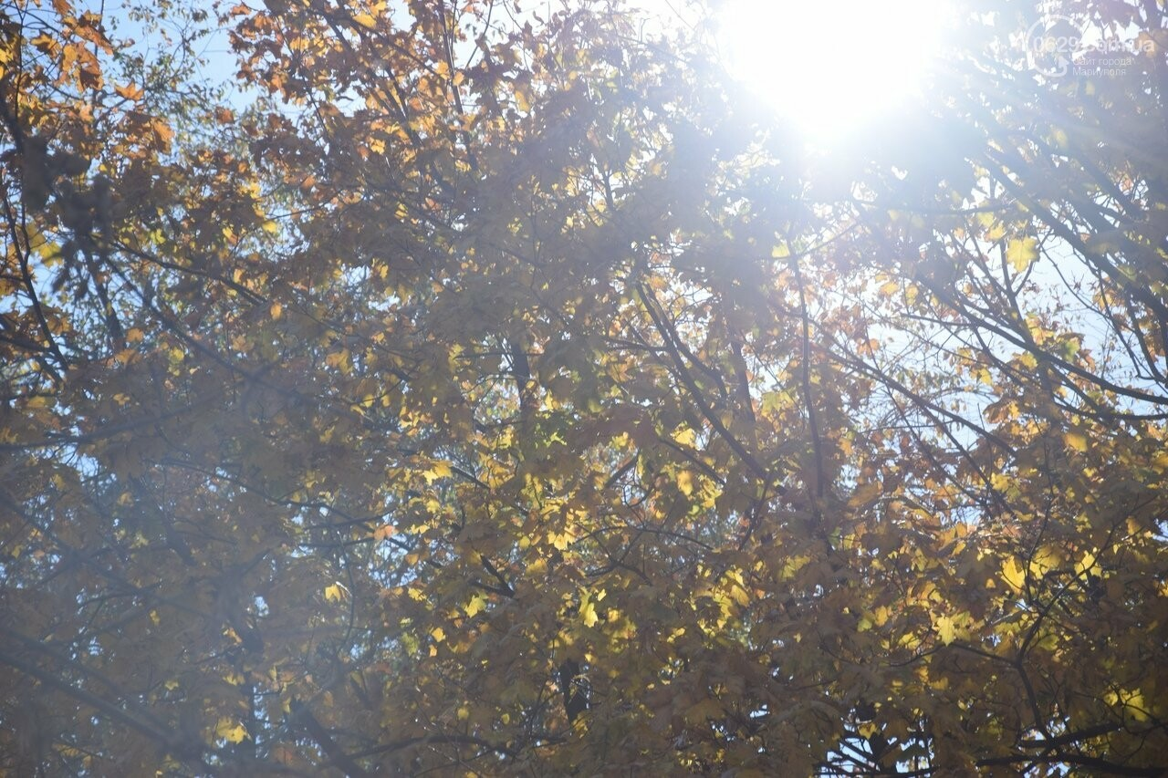 Мариуполь ловит теплое дыхание осени, - ФОТОРЕПОРТАЖ, фото-47