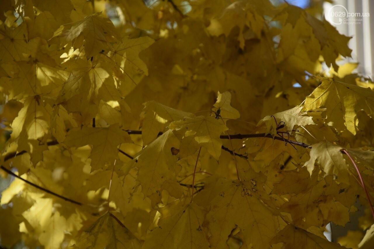 Мариуполь ловит теплое дыхание осени, - ФОТОРЕПОРТАЖ, фото-8