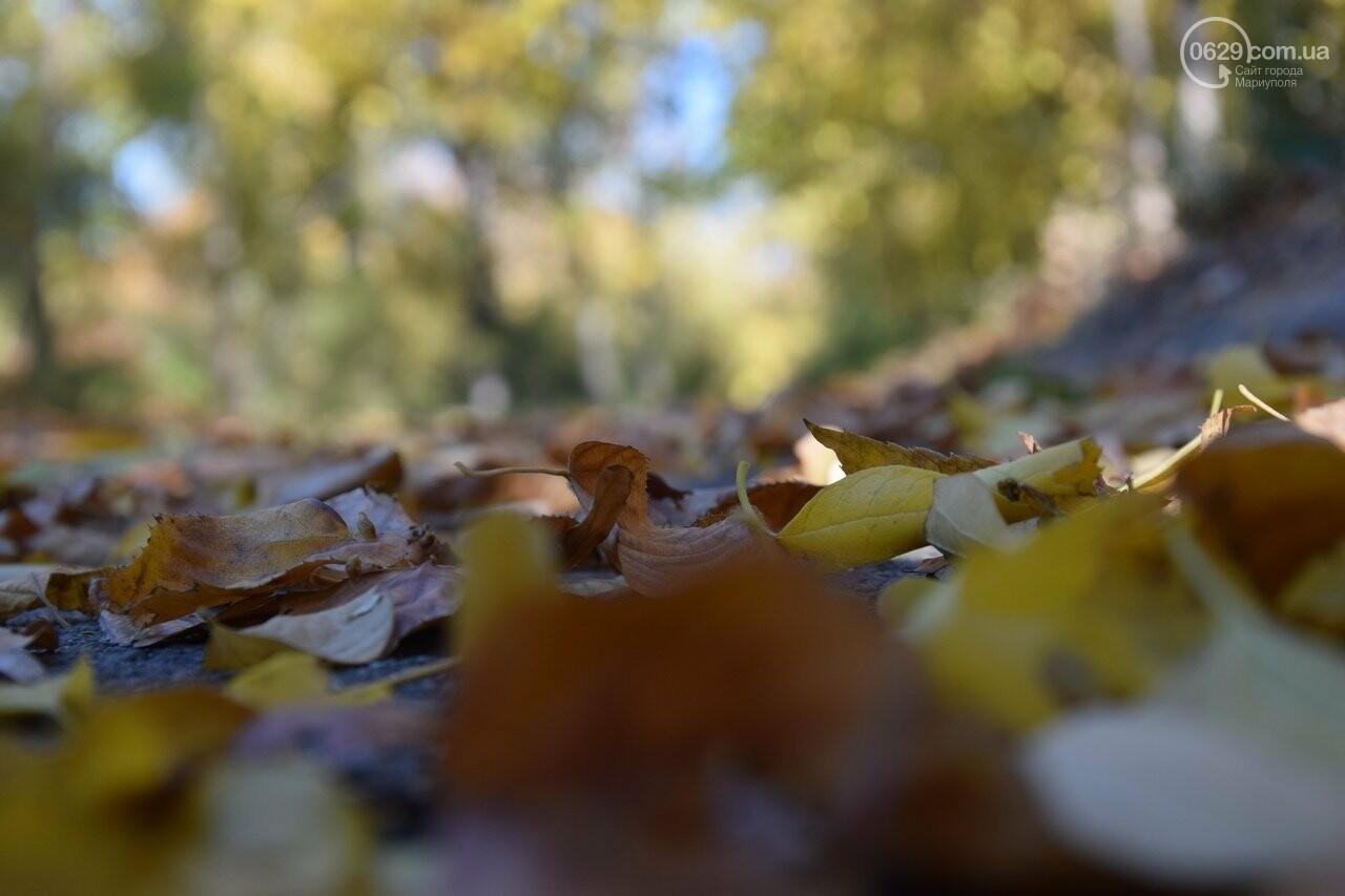Мариуполь ловит теплое дыхание осени, - ФОТОРЕПОРТАЖ, фото-1