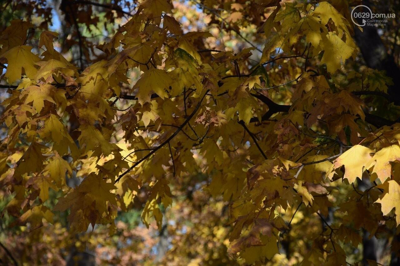 Мариуполь ловит теплое дыхание осени, - ФОТОРЕПОРТАЖ, фото-18
