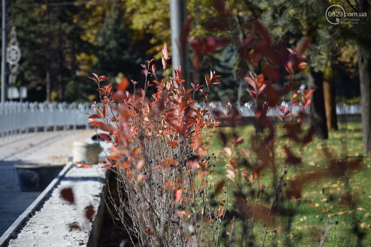 Мариуполь ловит теплое дыхание осени, - ФОТОРЕПОРТАЖ, фото-20