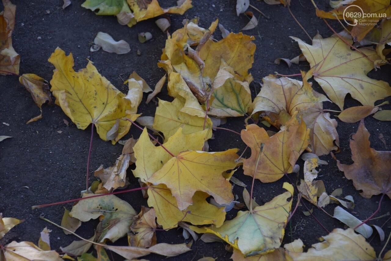 Мариуполь ловит теплое дыхание осени, - ФОТОРЕПОРТАЖ, фото-17