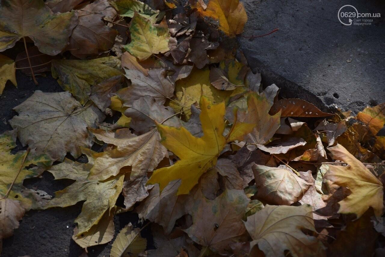 Мариуполь ловит теплое дыхание осени, - ФОТОРЕПОРТАЖ, фото-22