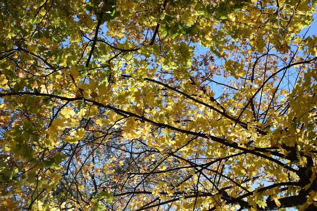 Мариуполь ловит теплое дыхание осени, - ФОТОРЕПОРТАЖ, фото-42