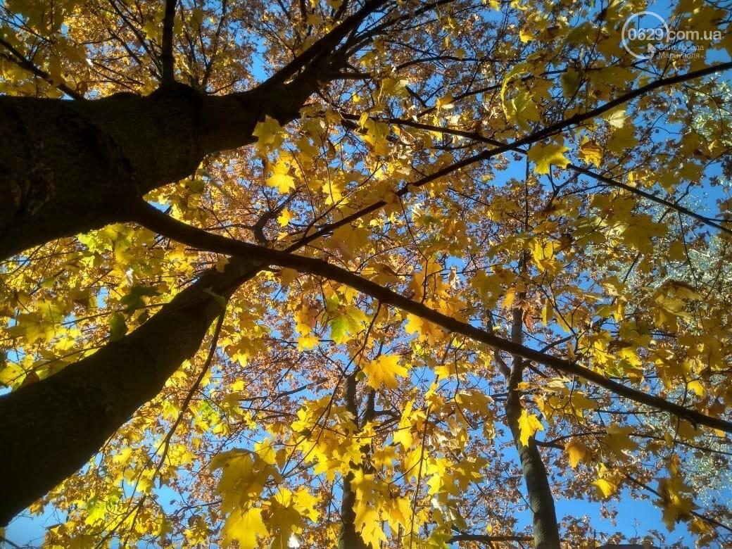 Мариуполь ловит теплое дыхание осени, - ФОТОРЕПОРТАЖ, фото-6