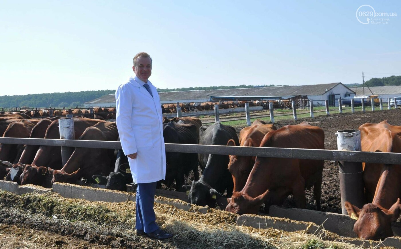 Юрий Тернавский: «Мариупольский молокозавод может напоить молоком каждого жителя Мариуполя и Приазовья», фото-22