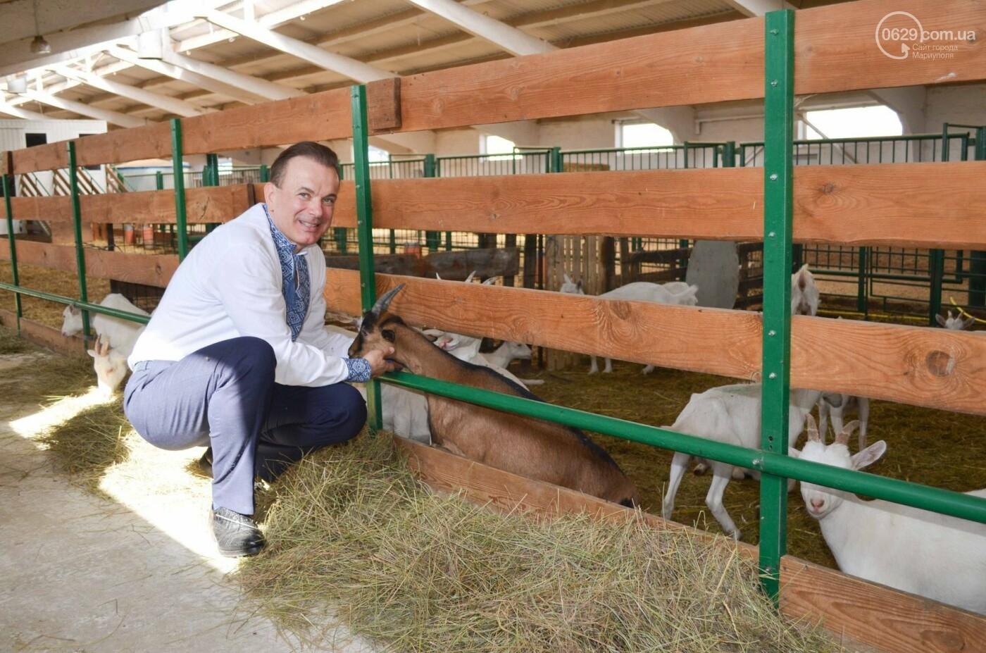 Юрий Тернавский: «Мариупольский молокозавод может напоить молоком каждого жителя Мариуполя и Приазовья», фото-40