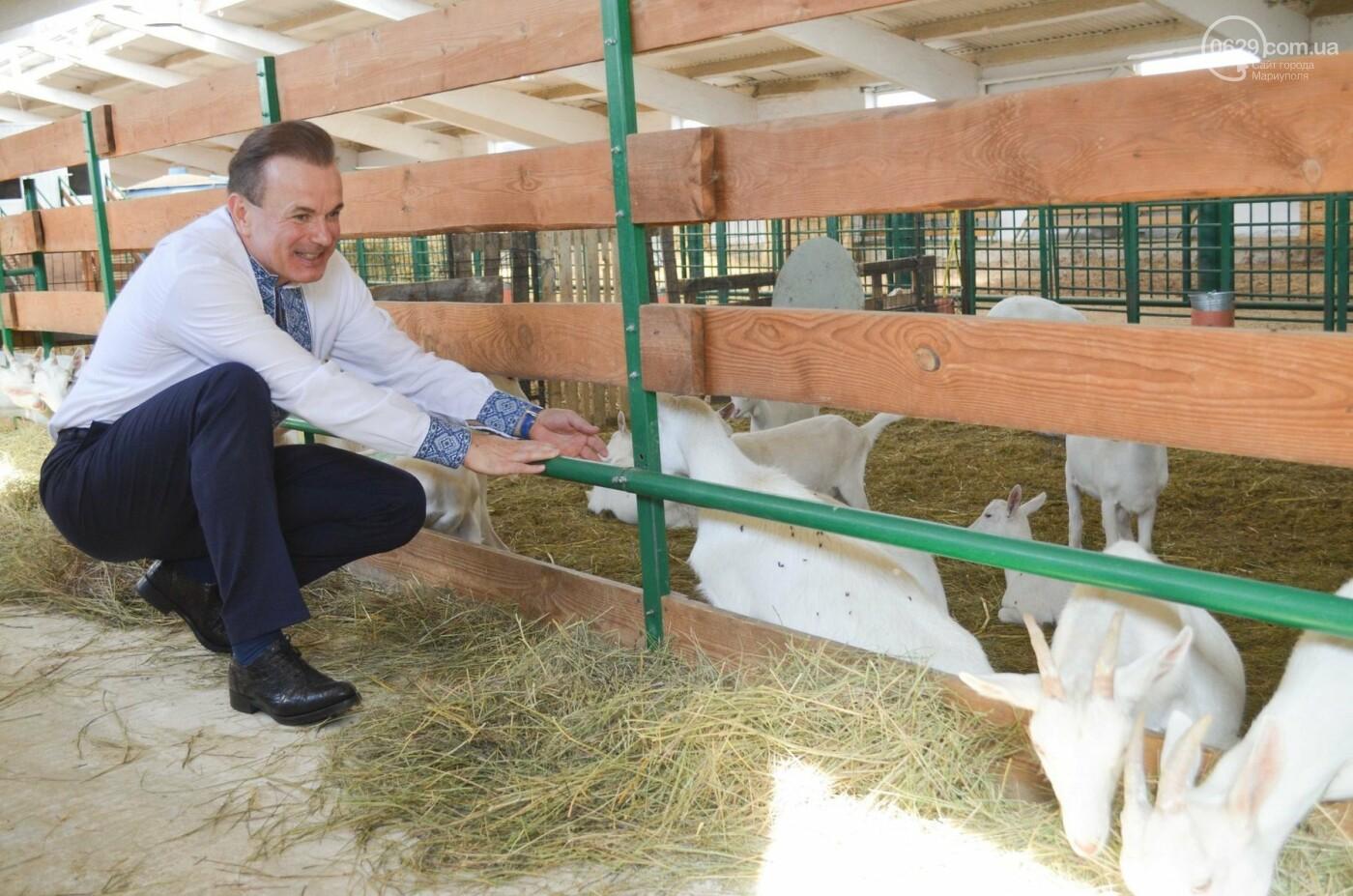 Юрий Тернавский: «Мариупольский молокозавод может напоить молоком каждого жителя Мариуполя и Приазовья», фото-42